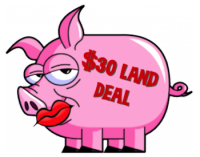 Lip Stick on Pig-$30 Land Deal Graphic