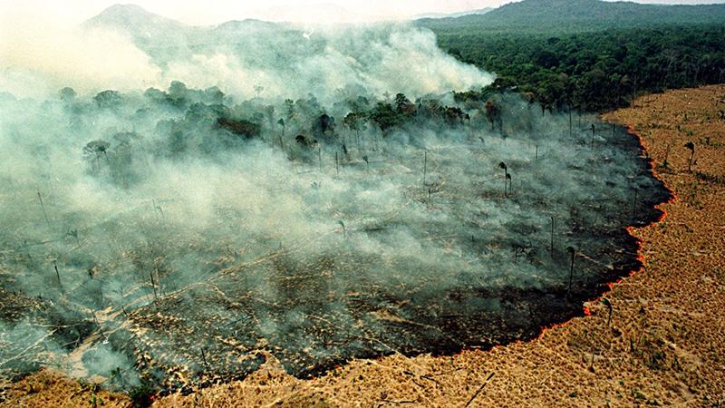 Amazon Brazil Fires